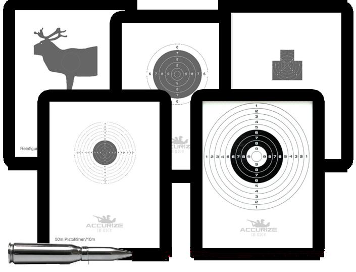Accurize skytesystem